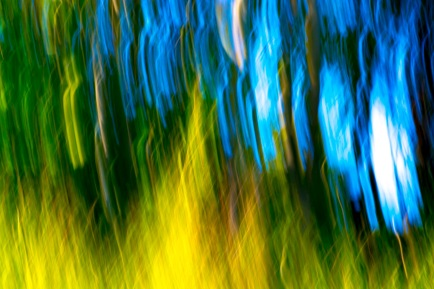 Abstract-16