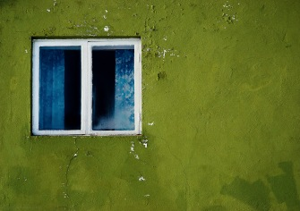 Green wall with window