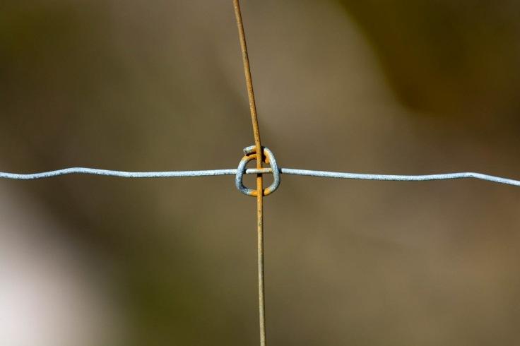 Wire-5
