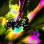 artsy flowers-10